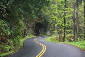 Focus Road